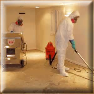 Water Intrusion, Mold Remediation, Mold Removal, Mold Testing, Mold Consultant